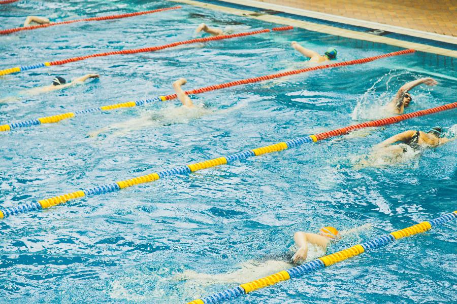 Swim Clubs